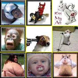 Смешные аватары скачать