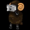 Иконка, картинка с овцой