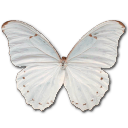 иконки-бабочки, скачать